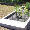 Wastewater Garden for cleaning effluent from biogas rector