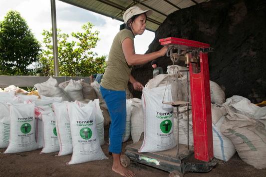 20Kg Sacks of Compost